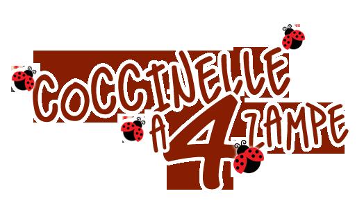 coccinele logo